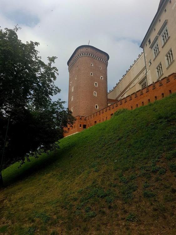 Road Trip en Pologne - Page 4 1058203108_20190730_100806v.thumb.jpg.23d166f16b3db3ff34c38300dc9c0393