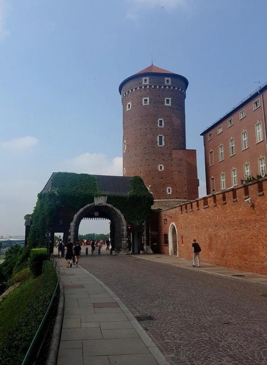 Road Trip en Pologne - Page 4 1683173575_20190730_101058v.thumb.jpg.da51e4fe3b37e889167f702536e6600e