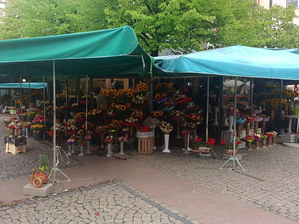 Road Trip en Pologne - Page 4 1893223529_20190731_144837v.jpg.60ef6883041ede347fcc85c577492b43