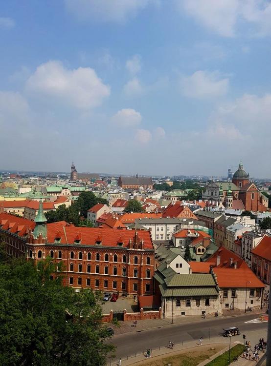 Road Trip en Pologne - Page 4 2041598790_20190730_115936v.thumb.jpg.eeb9ab51eecf33eebcc0ee125ae9a399