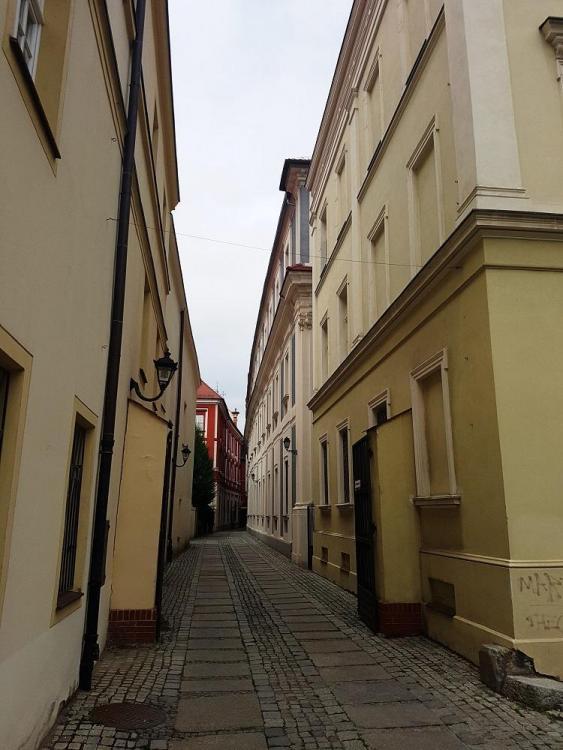 Road Trip en Pologne - Page 4 482315499_20190731_160745v.thumb.jpg.10740e950a5886136f27f30f5c6bb037