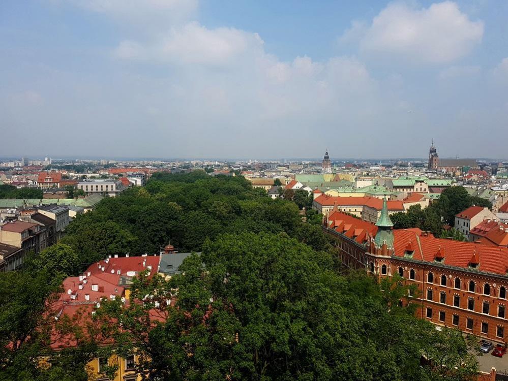 Road Trip en Pologne - Page 4 911273766_20190730_115921v.thumb.jpg.a8661ba9e8374b419169d75584d9c051