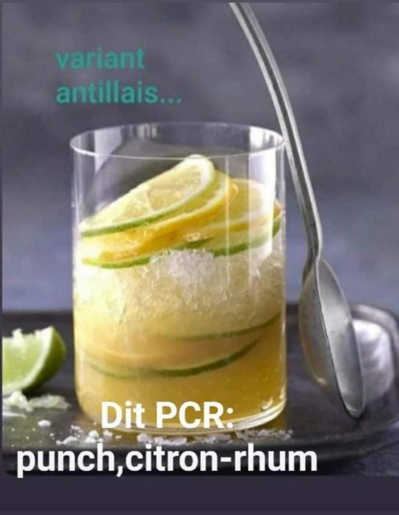 PCR-1.jpg