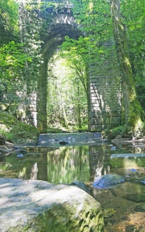 le_pont_du_deluge_-_mervent_-85200.jpg